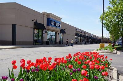 Commercial Lease For Lease: 44533 Schoenherr Road