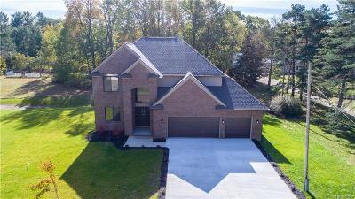 White Lake Single Family Home For Sale: 4470 Grass Lake Road
