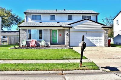Southfield Single Family Home For Sale: 27055 Marshall Street
