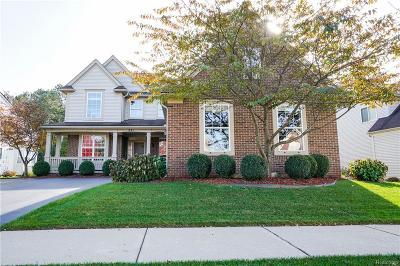 Oxford Single Family Home For Sale: 841 Island Lake Drive