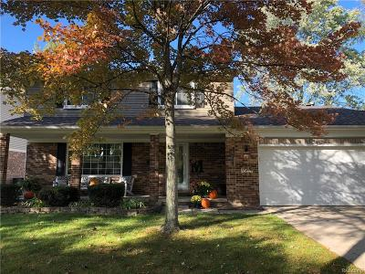 CANTON Single Family Home For Sale: 7592 Chichester Road