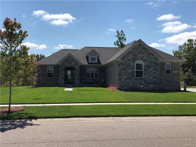 Oxford Single Family Home For Sale: 1141 Cedar