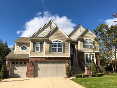Northville Single Family Home For Sale: 49681 S Glacier