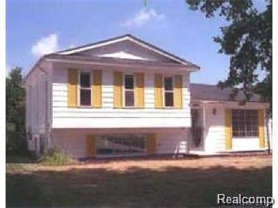 Romulus Single Family Home For Sale: 28678 Burning Tree Lane