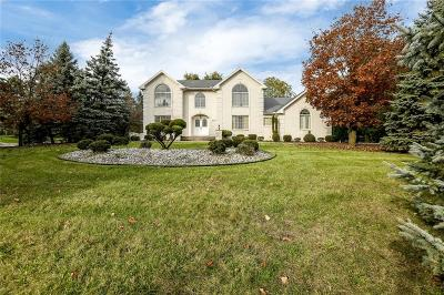 Farmington Hills Single Family Home For Sale: 26390 Hidden Valley Drive