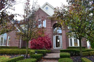 Northville Twp Single Family Home For Sale: 16513 Brooklane Boulevard