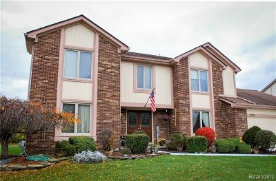 Farmington, Farmington Hills Single Family Home For Sale: 38036 Baywood Drive