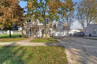 South Lyon Single Family Home For Sale: 400 2nd Street