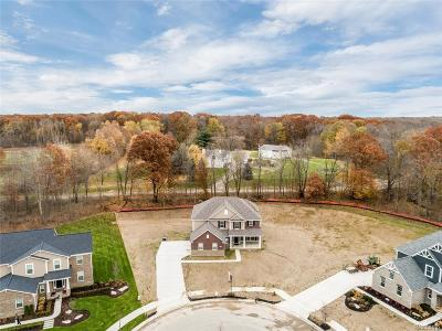 Lyon Twp Single Family Home For Sale: 23395 Millwood East Court
