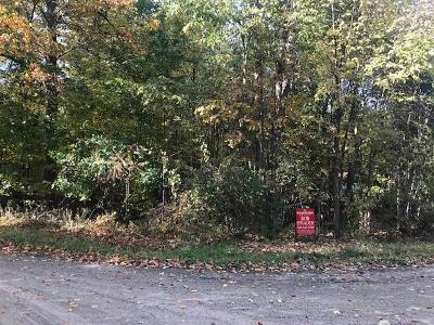 Farmington Hills Residential Lots & Land For Sale: Vacant Parker Street