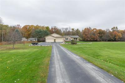 Brandon Twp Single Family Home For Sale: 5625 Sunkist Drive