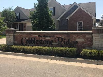 Belleville, Belleville-vanbure, Van Buren, Van Buren Twp Condo/Townhouse For Sale: 13493 Christina Lane
