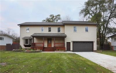 Commerce, Commerce Township, Commerce Twp Single Family Home For Sale: 1895 Big Trail Road
