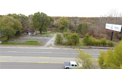 Oakland County Commercial Lots & Land For Sale: 8703 Highland Road