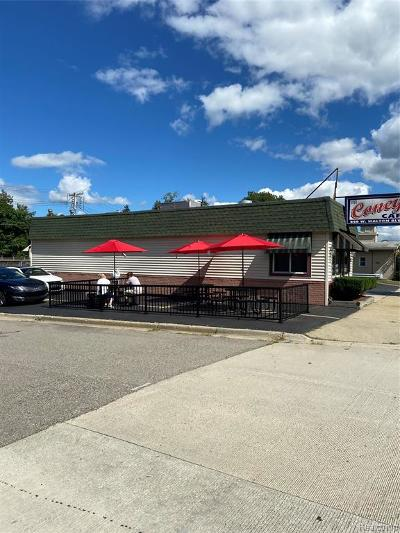 Pontiac MI Commercial For Sale: $399,900