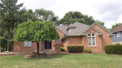Shelby Twp Single Family Home For Sale: 13731 Pheasant Drive