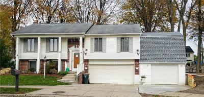 Canton, Canton Twp Single Family Home For Sale: 41846 Winter Court