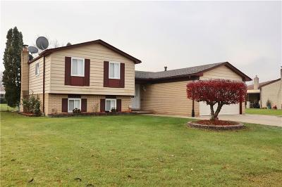 Sterling Heights MI Single Family Home For Sale: $245,000