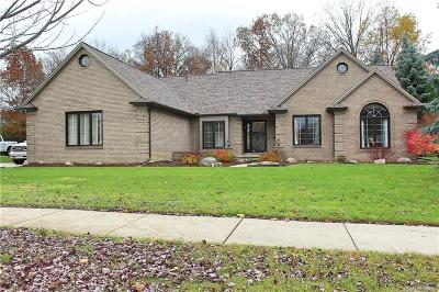 STERLING HEIGHTS Single Family Home For Sale: 3084 Farmdale Drive