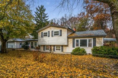 West Bloomfield, West Bloomfield Twp Single Family Home For Sale: 2496 Maybury Street