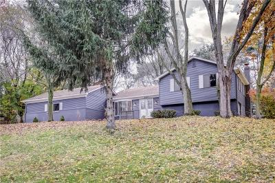 Rochester, Rochester Hills Single Family Home For Sale: 580 Longford Drive