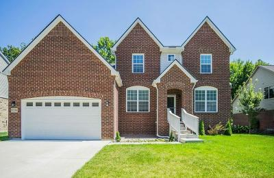 Chesterfield Twp Single Family Home For Sale: 51338 Brushford Drive