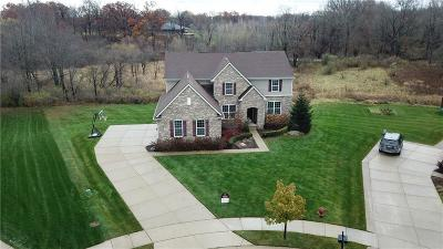 Oakland Twp Single Family Home For Sale: 848 Birchwood Court