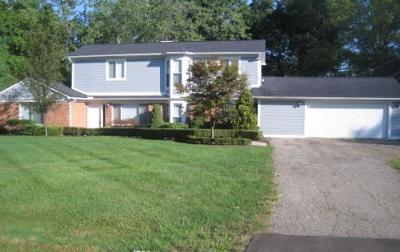 Bloomfield Twp Single Family Home For Sale: 3617 Shallow Brook Drive