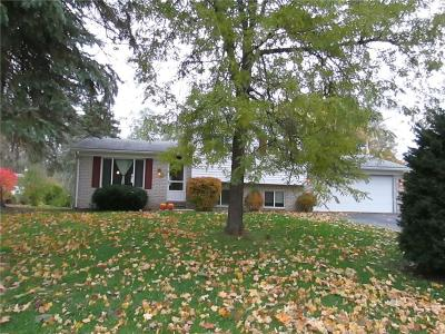 Commerce, Commerce Township, Commerce Twp Single Family Home For Sale: 926 Morella St Street N