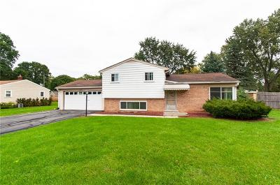 Waterford, Waterford Twp Single Family Home For Sale: 1190 Hira Street