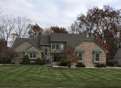 Grosse Ile Twp Single Family Home For Sale: 25071 Parke Lane