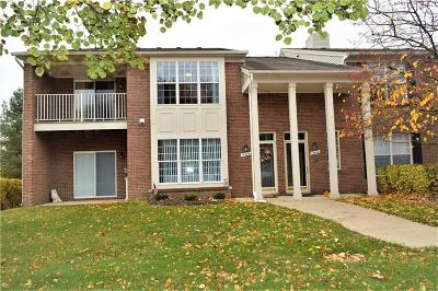 STERLING HEIGHTS Condo/Townhouse For Sale: 13442 Forest Ridge Boulevard #176