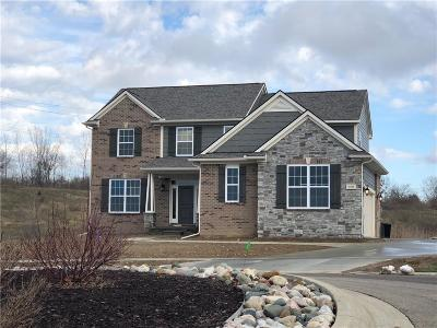 Oxford Single Family Home For Sale: 1430 Glass Lake Circle