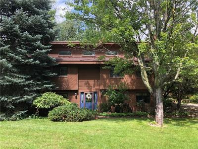 Highland Single Family Home For Sale: 1951 Harvey Lake Road
