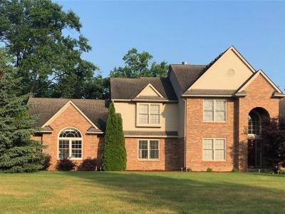 Green Oak Twp MI Single Family Home For Sale: $394,900