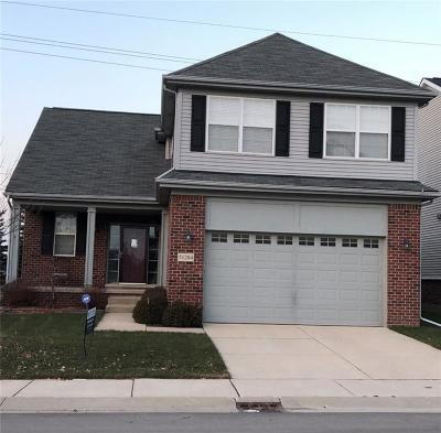 NOVI Single Family Home For Sale: 51284 E Bourne Terrace