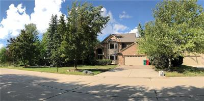Macomb Twp Single Family Home For Sale: 16601 Huntington Woods Drive