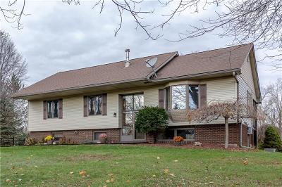 Huron Twp Single Family Home For Sale: 37230 Judd Road