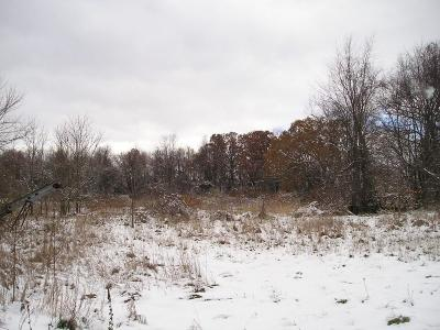 Bruce Twp Residential Lots & Land For Sale: 3701 Taft Rd Road W