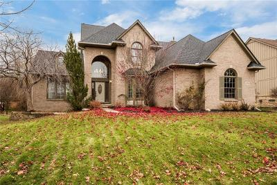 Novi Single Family Home For Sale: 45694 Marlborough Pl