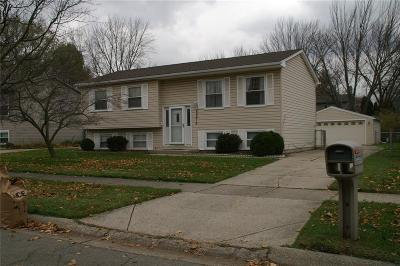 Single Family Home For Sale: 44478 Albert Drive