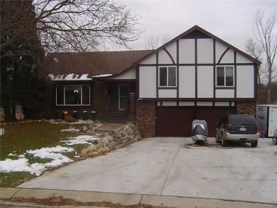 Lake Orion Vlg, Lake Orion, Orion Twp, Oxford Twp, Oxford Vlg Single Family Home For Sale: 254 Cross Timbers Street