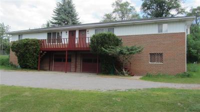 Ortonville Single Family Home For Sale: 640 Oakwood Road