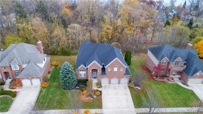 Novi Single Family Home For Sale: 31132 Lagoon Drive