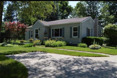 Lyon Twp Single Family Home For Sale: 25051 Martindale Road
