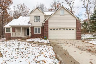 Lake Orion, Orion Twp, Orion Single Family Home For Sale: 1260 Viefield Drive