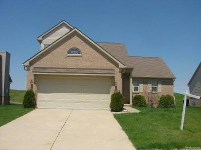 Romulus Single Family Home For Sale: 33186 Sand Piper Drive Drive