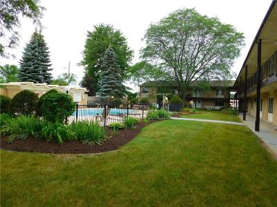 Plymouth Condo/Townhouse For Sale: 1450 Ann Arbor Road W #32