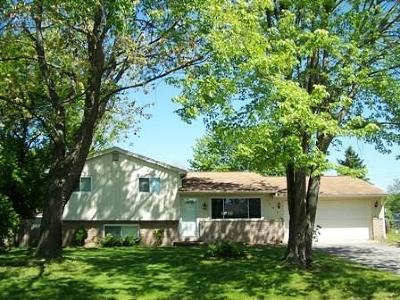 White Lake Single Family Home For Sale: 348 Decca