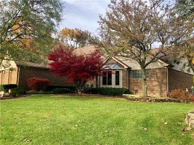 Northville Single Family Home For Sale: 46821 Elmsmere Drive